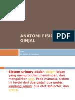 anatomi fisiologi ginjal