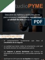 EstudioPYME 2016 Informe Final Web