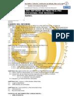 Anexo 5 -Esquema Del Informe de Practica