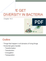 generation of diversity in bacteria