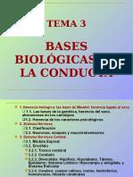 BASES+BIOLOGICAS+DE+LA+CONDUCTA[1]