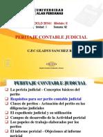 Peritaje Contable Judicial - Semana 02