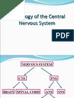 Nervous Physiology L1