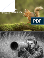 An Insight Into Wildlife Photography