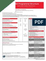SBS Programme Structure (MacInnes)