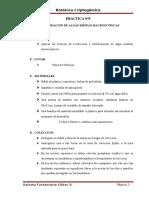 Informes Cripto Practica 9 12