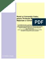Romii Si Conventia Cadru Pentru Protectia Minoritatilor Nationale
