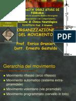 Organizzazione Motoria