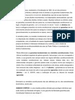 TRABALHO CONSTITUCIONAL (REMÉDIOS CONSTITUCIONAIS)