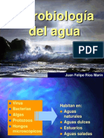 Microorganismos en El Agua