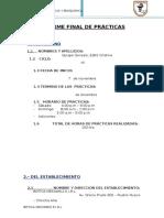 INFORME FINAL DE PRÁCTICAS VIII CICLO.docx