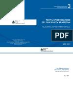 Perfil Epidemiológico Suicidio Argentina 2011_0