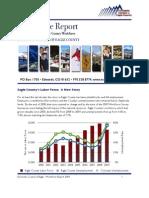 2009 Workforce Survey Report 3-31-2010