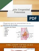 Región Urogenital Femenina.pptx