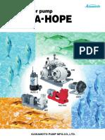 Seawater Pump Series