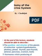 Anatomi Endokrin Mei 2014 Revisi