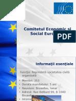 Comitetul Economic Şi Social European