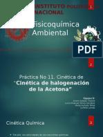 Practica 11. cinética de halogenación de la acetona