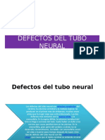 CLASE ELEIA Mielomeningocele y Espina Bifida