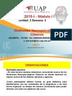 Semana 3 - Sindromes Clasicos Neuropsicologicos 1