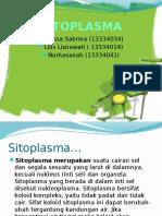 sitoplasmma ppt