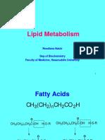 Lipid Metabolism Pdf