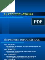 FUNCION MOTORA