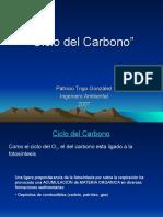Ciclo Del Carbono (4)