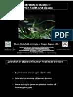 Zebrafish in studies of human health and disease (Monte Westerfield)