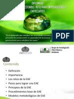 EVALUACION_AMBIENTAL_ESTRÁTEGICA[1].pdf