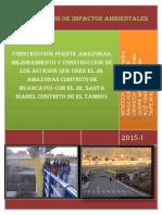 Evaluacion de Impactos Puente Amazonas Listo 1