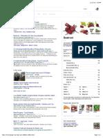 Beet - Google Search