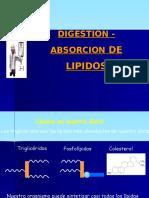 CLASE 7  . DIGESTION- ABSORCION D ELIPIDOS.ppt