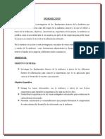 Fundamentos basicos de la auditoria