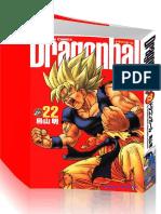 DragonBall Vol22