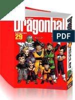 DragonBall Vol29