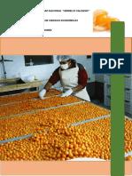 Plan de Exportación de Aguaymanto Semi Deshidratado y Deshidratado