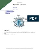 patologia-cuerdas-vocales