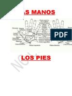 Mapas Manos y Pies