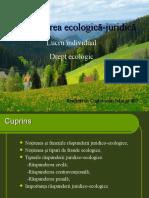 Răspunderea ecologico- juridică
