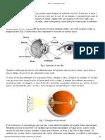 ARP - Como Funciona o Olho
