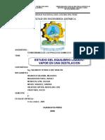 equilibrio-liquido-vapor-2008.doc