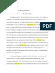 arafat amirah essay 2  revised