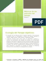 Ecologia Secion 3 Metricas de Los Patrones Del Paisaje