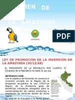 Regimen Amazonico 2015