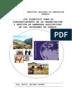 MANUAL DIDACTICO en Fortalecimiento Organizacional