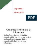 Capitolul 7.pptx