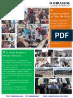 """Jornal """"O Girassol"""" - 3a Edição Novembro 2014"""