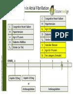 anticoagulationinatrialfibrillation-130810201825-phpapp02