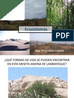 154134071-5-ECOSISTEMA